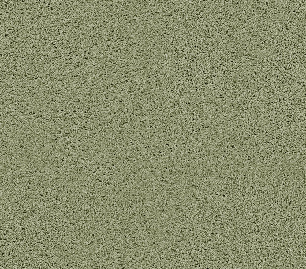 Beautiful I - Menthe verte tapis - Par pieds carrés