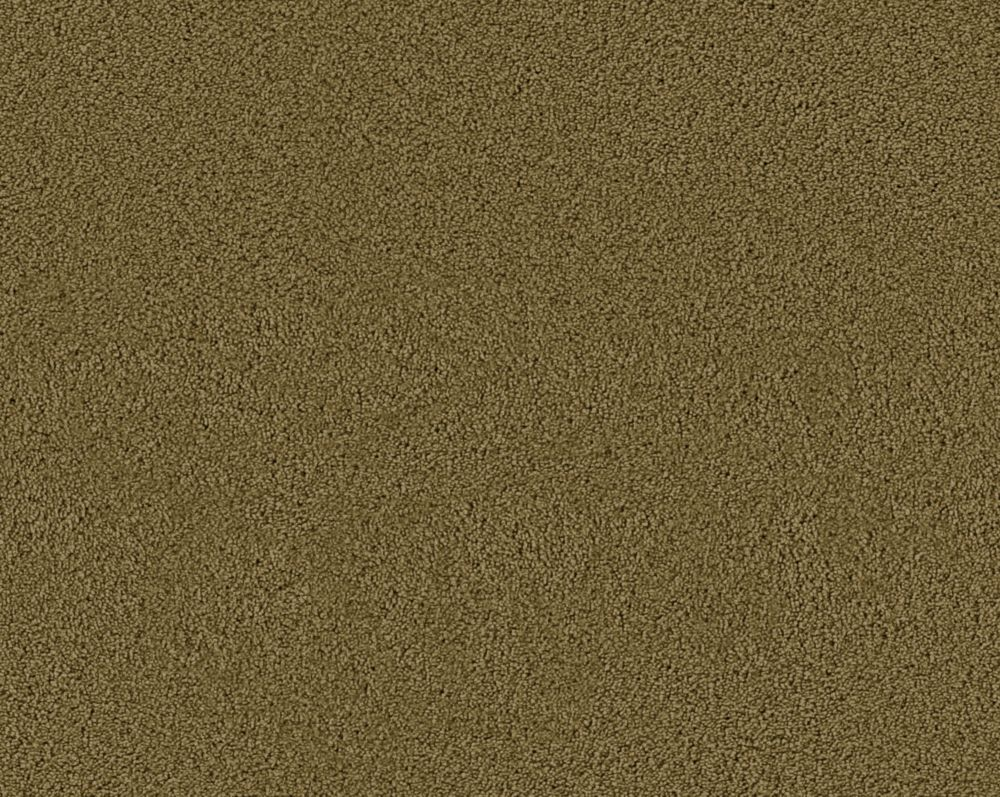Beautiful II - Thicket Carpet - Per Sq. Ft.