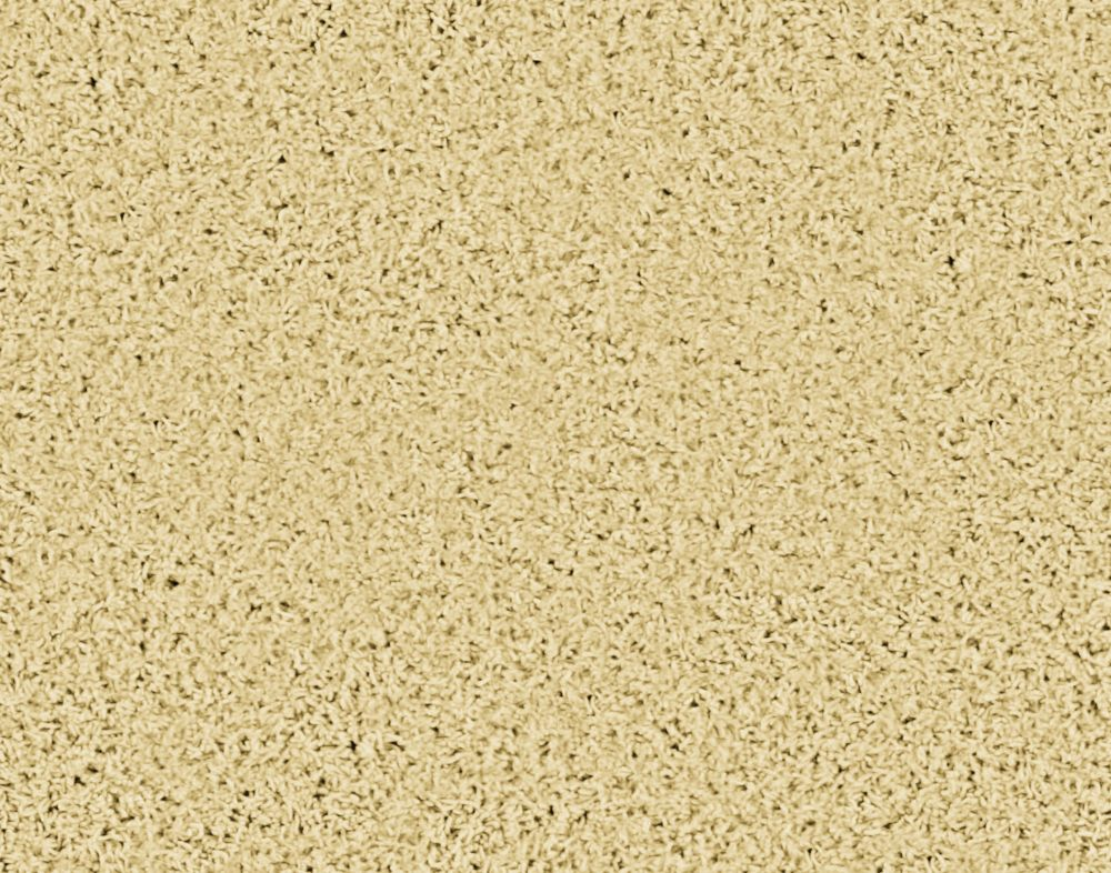 Pleasing II - Grain Carpet - Per Sq. Ft.
