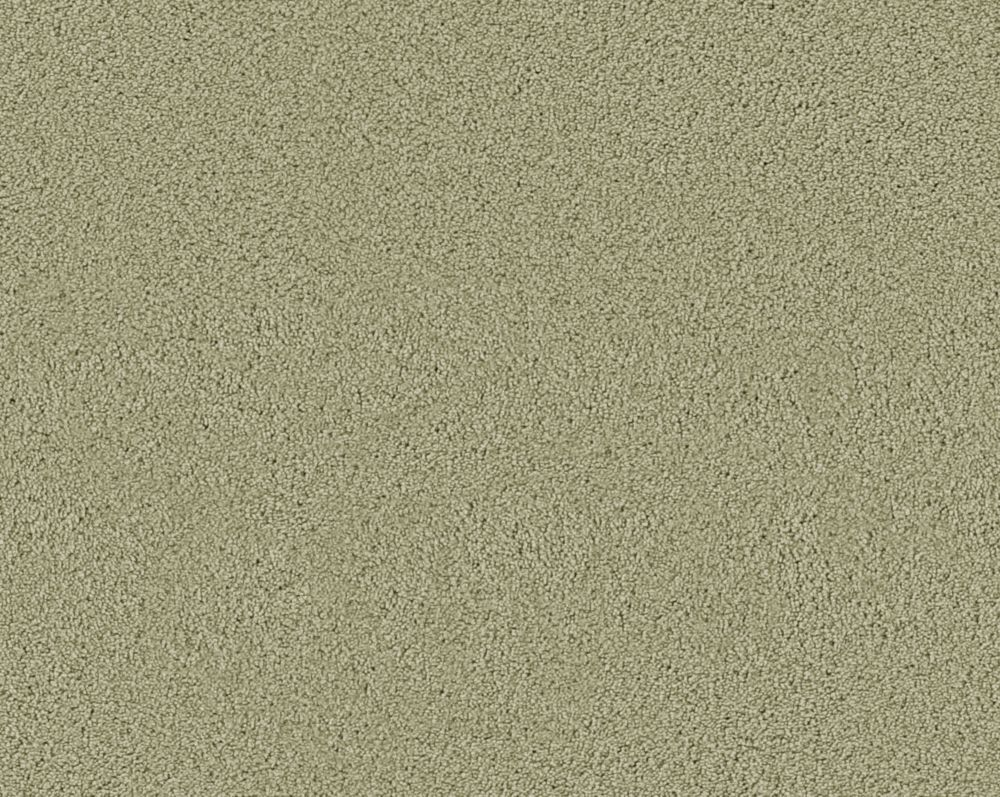Beautiful II - Sauge tendre tapis - Par pieds carrés
