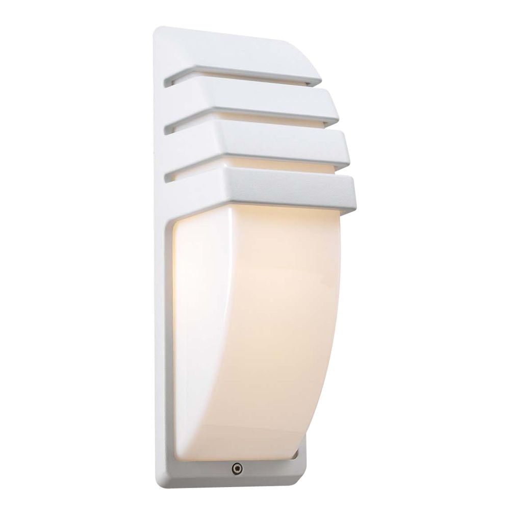 1 Light Outdoor Wall Sconce with Matte Opal Glass and White Finish
