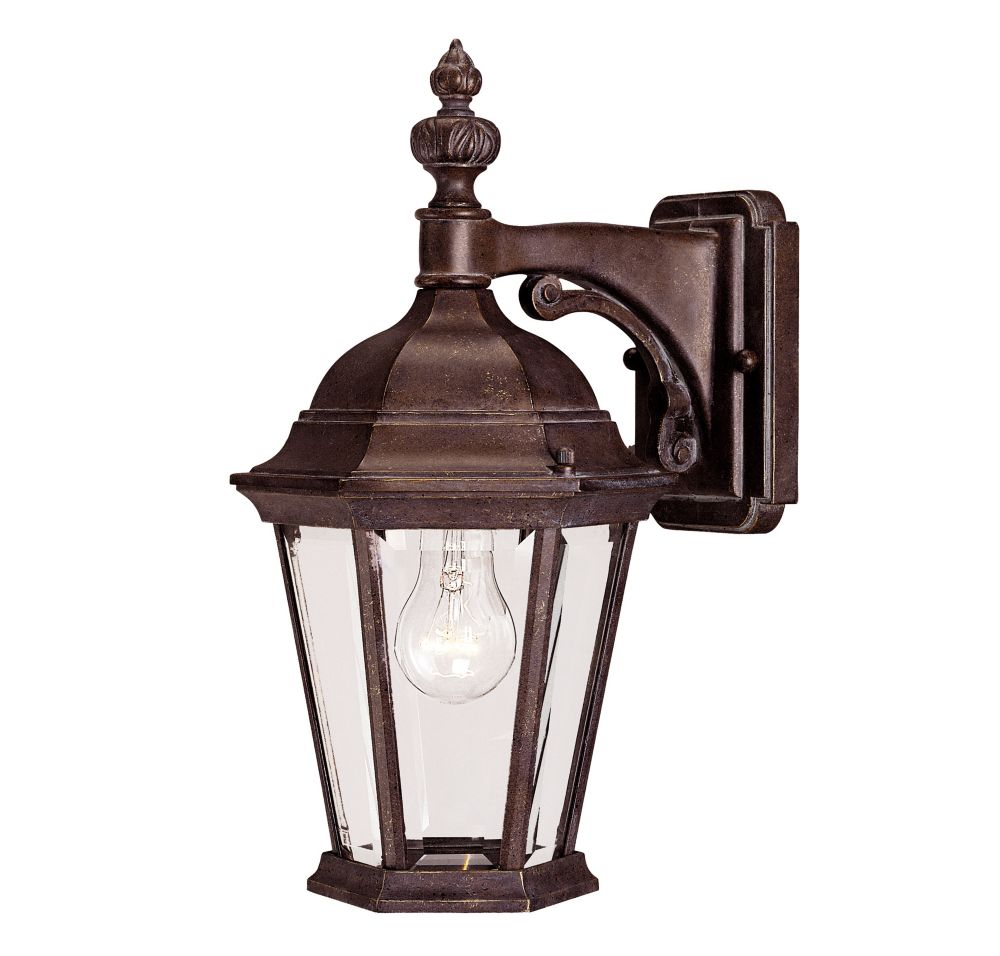 Satin 1 Light Bronze Incandescent Outdoor Wall Mount With Clear Glass