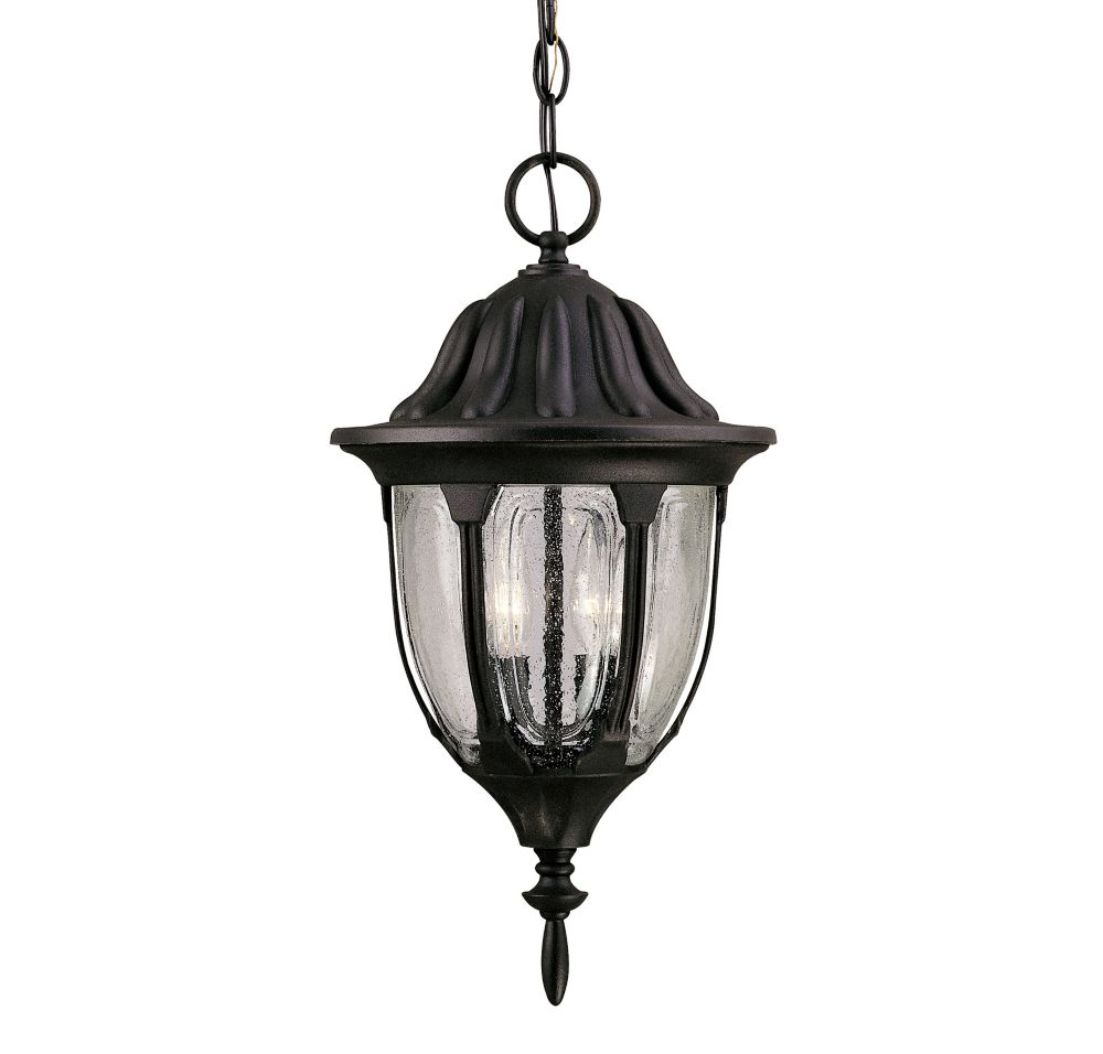 Satin 2 Light Black Halogen Outdoor Hanging Lantern With Clear Glass