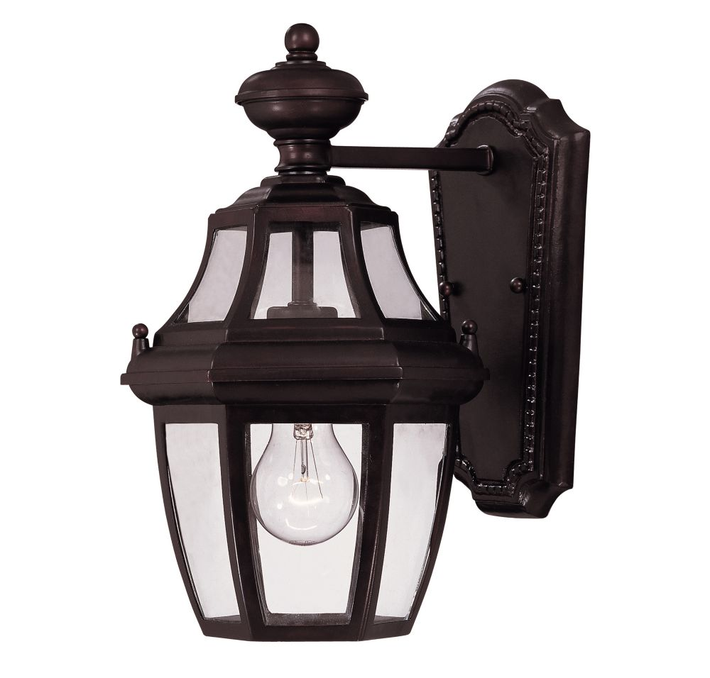 Satin 1-Light Bronze Outdoor Wall Mount with Clear Glass