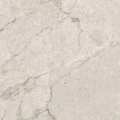 12 in. x 23.82 in. Carrara White Luxury Vinyl Tile Flooring (Sample)