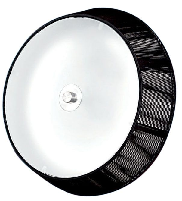 RICARDA Ceiling Light 1L, Black Finish, Frosted Glass