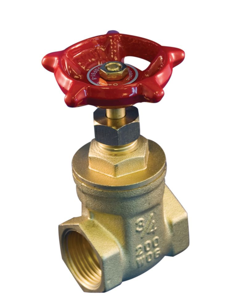 Gate Valve 1/2 Inch Brass Threaded Lead Free