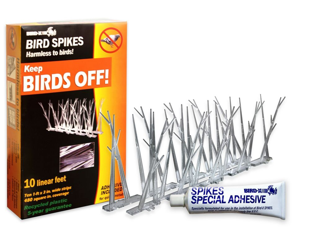 Bird-X 10 Feet. Plastic Bird Spikes Kit with Glue