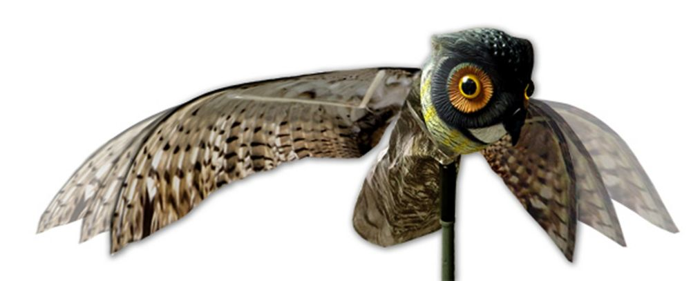 Bird-X Prowler Owl with Flapping Wings