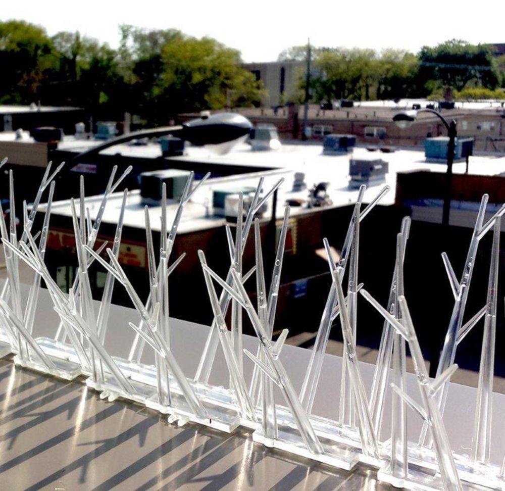 Bird-X 50 Feet. Plastic Bird Spikes