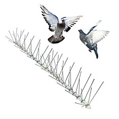 Stainless Bird Spikes 50 Foot Kit Guaranteed Bird Repellent Control #1 Best Seller