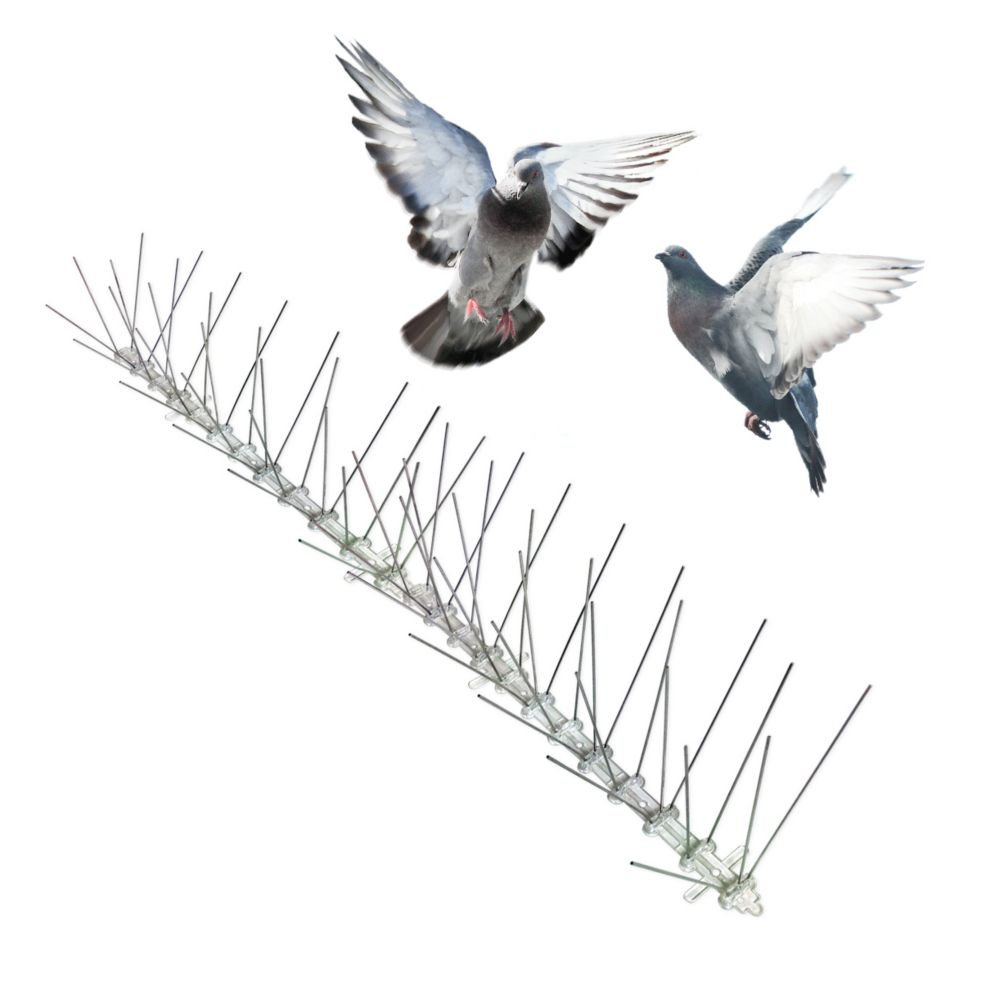 Bird-X 100 Feet. Stainless Bird Spikes