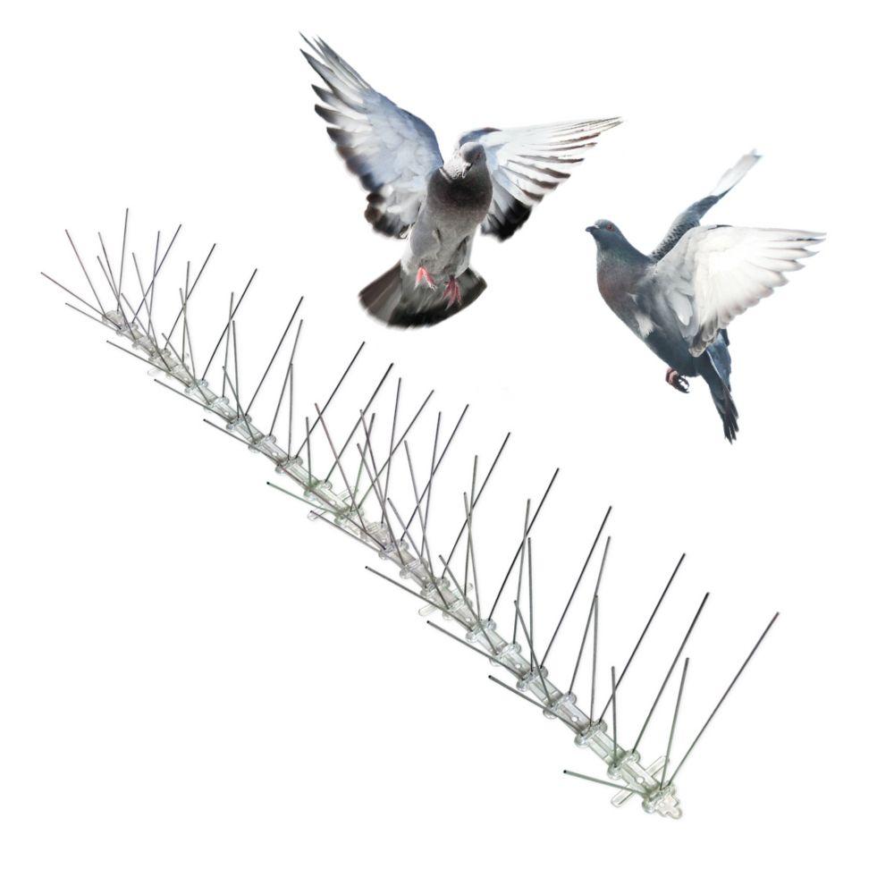 Piques anti-pigeons en acier inoxydable 100 ft. Bird-X