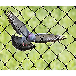 Bird-X Inc. Heavy Duty Bird Netting 25 ft. x 50 ft. Commercial Grade Bird Control 3/4 Inch Knotted Mesh