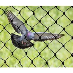 Bird-X Inc. Filet attrape-oiseaux robuste 25 ft. x 50 ft. Bird-X