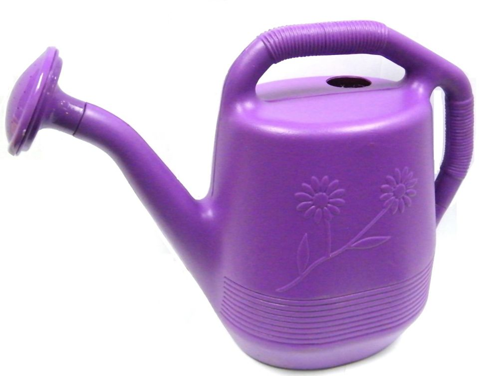 Watering can Purple