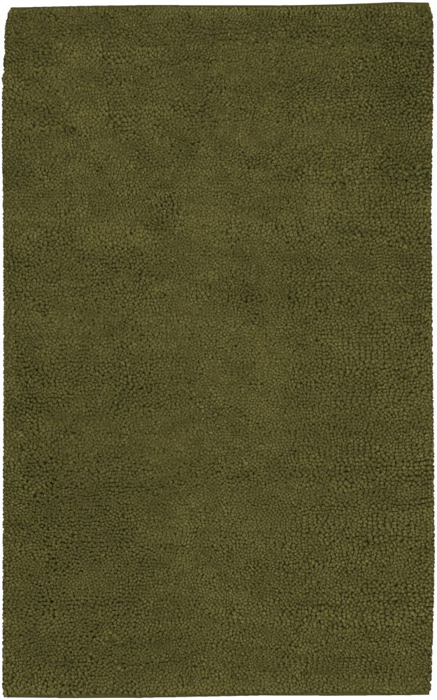 Imperial Green 5 ft. x 8 ft. Indoor Shag Rectangular Area Rug