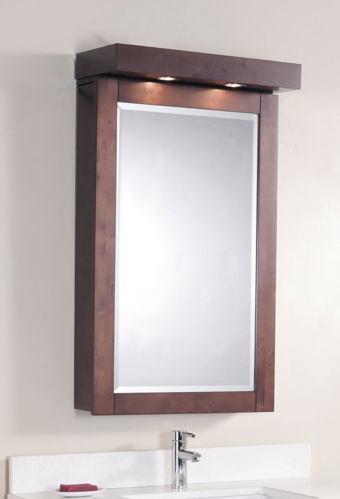 The Linden 22 Inches Medicine Cabinet in Walnut