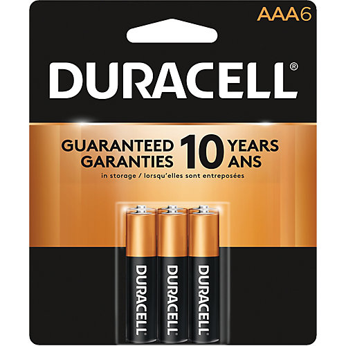 Coppertop AAA Alkaline Batteries 6 count