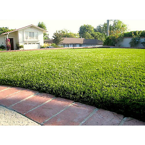 Jade 50 15 ft. x 25 ft. Artificial Grass for Outdoor Landscape