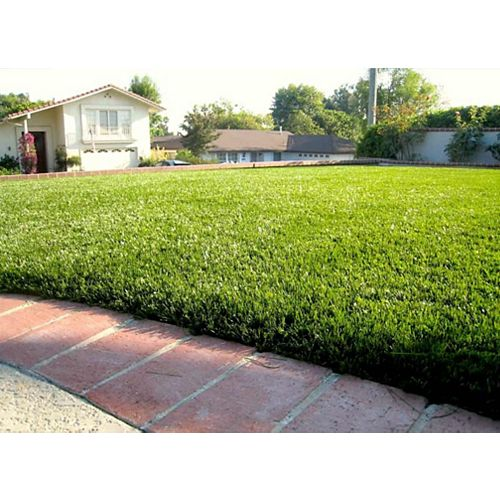 Greenline Jade 50 5 ft. x 10 ft. Artificial Grass for Outdoor Landscape