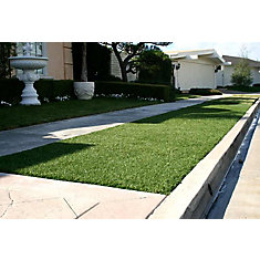 Classic 54 Fescue 5 ft. x 10 ft. Artificial Grass for Outdoor Landscape
