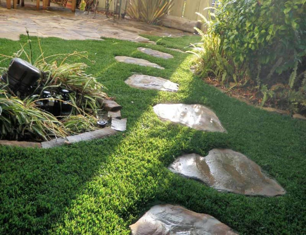 GREENLINE CLASSIC PREMIUM 65 FESCUE - Artificial Synthetic Lawn Turf Grass Carpet for Outdoor Lan...