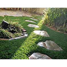 Classic Premium 65 Fescue 3 ft. x 8 ft. Artificial Grass for Outdoor Landscape