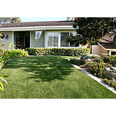 Classic Premium 65 Spring 3 ft. x 8 ft. Artificial Grass for Outdoor Landscape