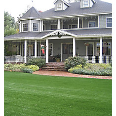 Classic Pro 82 Spring 5 ft. x 10 ft. Artificial Grass for Outdoor Landscape
