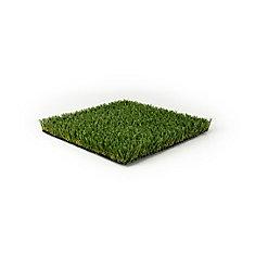 Pet or Sport 60 5 ft. x 10 ft. Artificial Grass for Outdoor Landscape