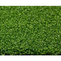 Greenline Putting Green 56 8 ft. x 12 ft. Artificial Grass for Outdoor Landscape