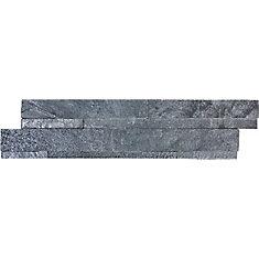 Carreaux autoadhésifs Astro, 6po x 24po, pierre d'appui, fini argenté