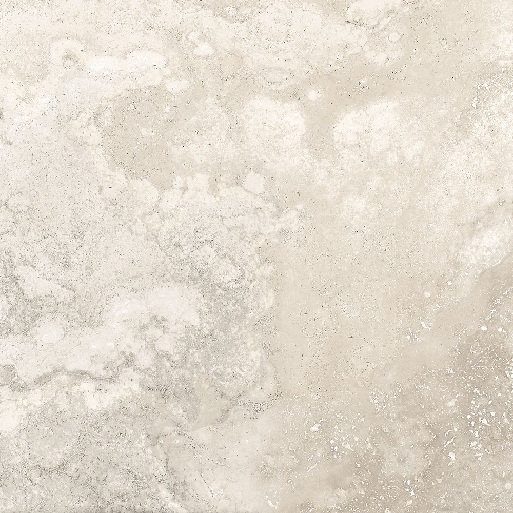 Rogini Bone 13 Inch X 13 Inch Glazed Porcelain Floor & Wall Tile (17.65 Sq. Feet/Case)