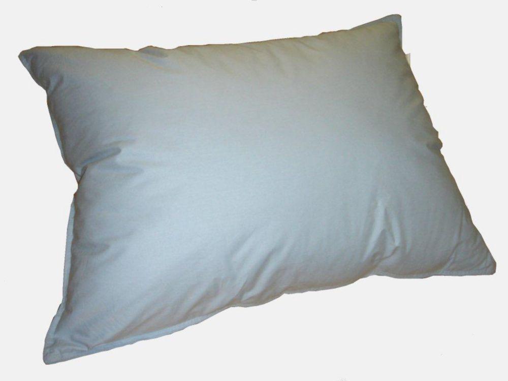 oreiller de plumes, format Standard, Bleu
