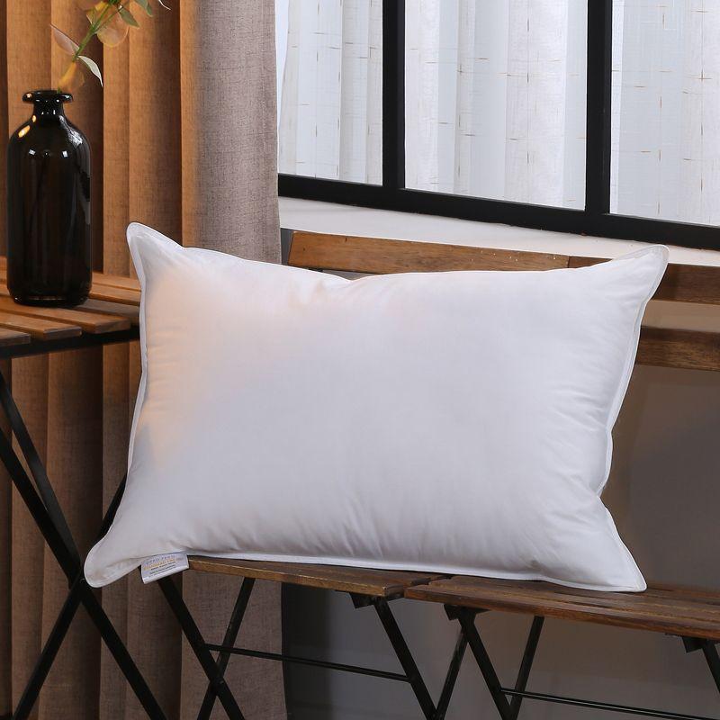 European Down Pillow, Standard20