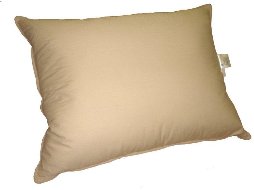 oreiller de plumes, format très grand, taupe