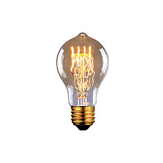 60W Vintage Filament Traditional Bulb
