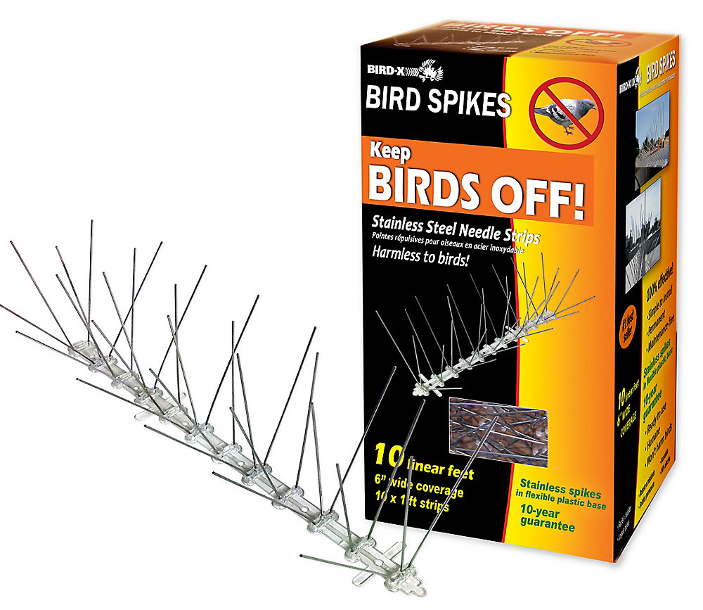 Stainless Steel Bird Spikes 10 Foot Kit Guaranteed Bird Repellent Control  #1 Best Seller
