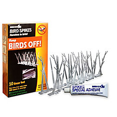 Plastic Bird Spikes 10 Foot Kit with Glue Guaranteed Bird Repellent Control #1 Best Seller
