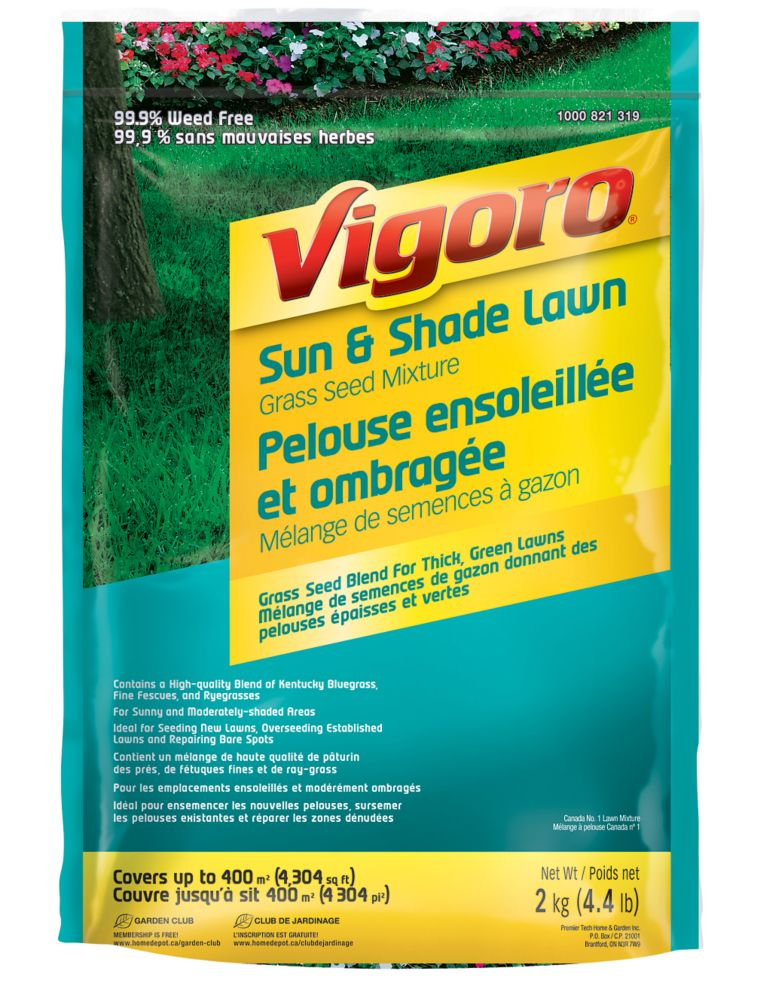 Sun & Shade Lawn Grass Seed Mixture