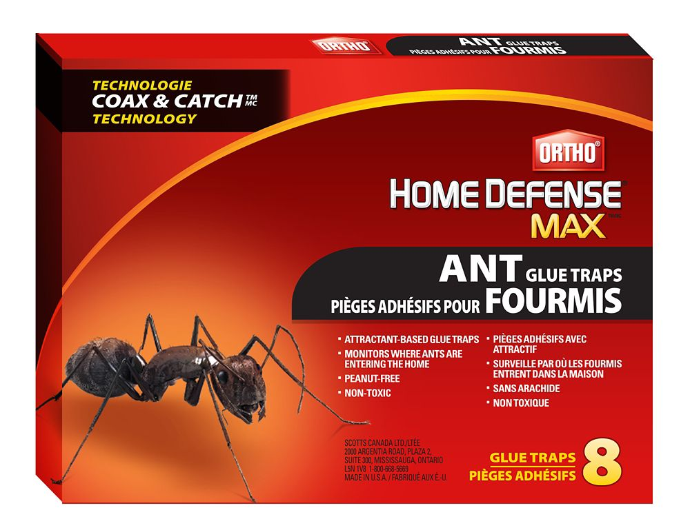 Otho Home Defense Ant Glue Trap