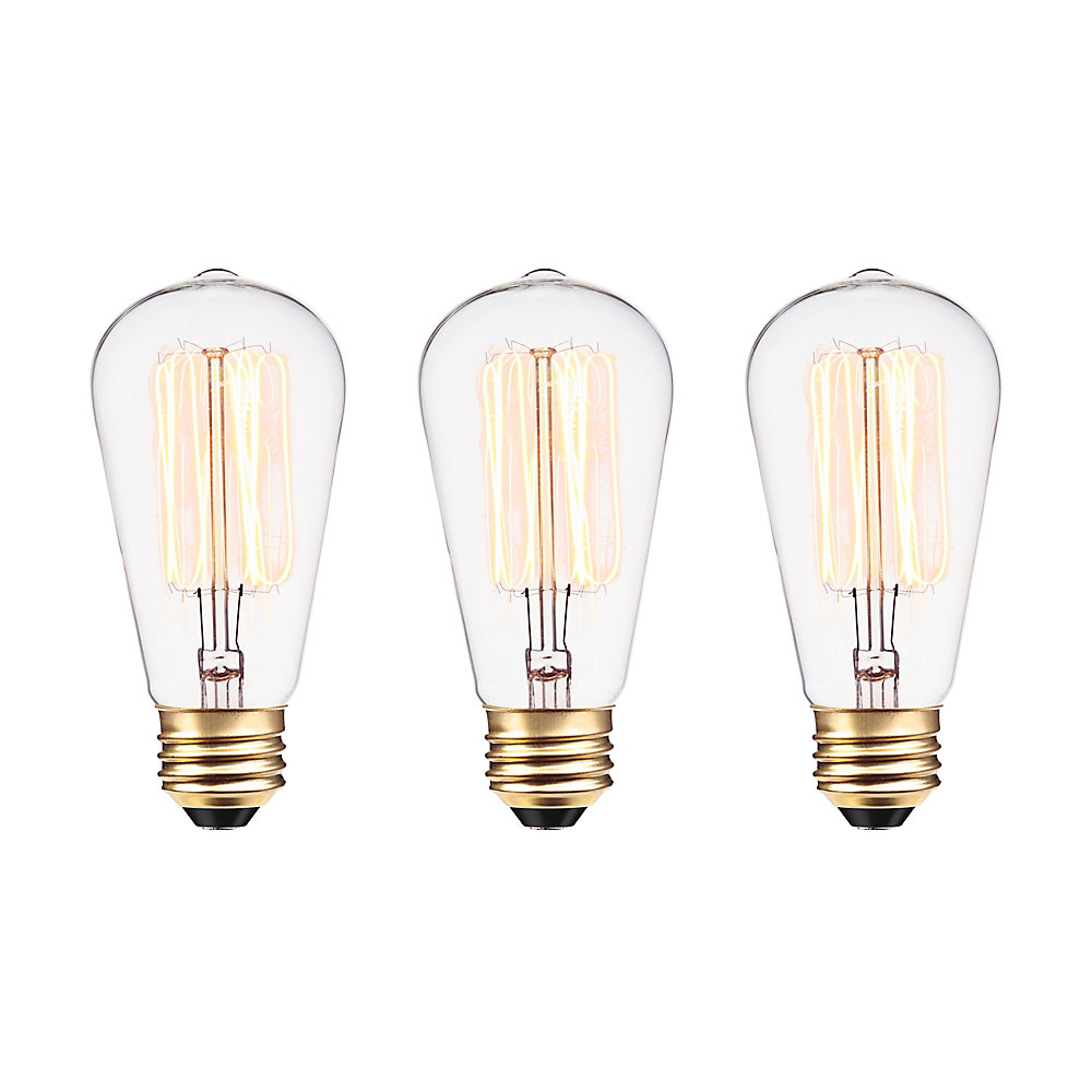 Edison 60W Incandescent S60 Squirrel Cage Vintage Filament Light Bulb with E26 Base (3-Pack)