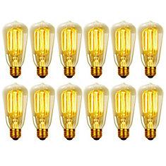 8440501 60W Vintage Edison S60 Squirrel Cage Incandescent Filament Light Bulb, E26 Base, 12 Pack