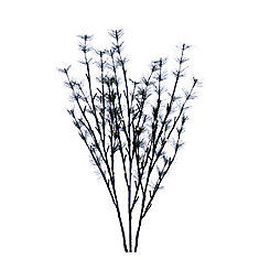 Floral Lights - Lighted Needle Pine Branch (Set of 3 branches), with 48 lights - Warm White, Indoor only, 32 -inch H