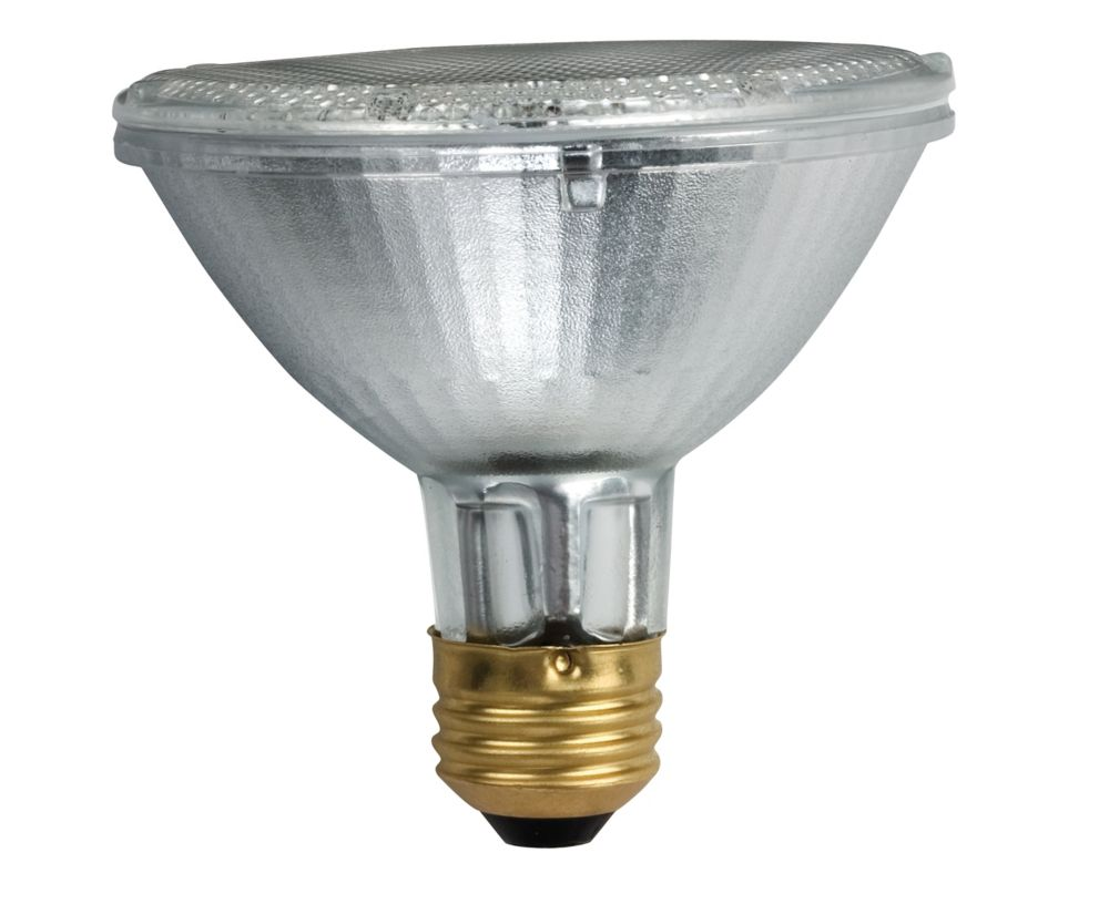 Halogen 75W PAR30 Short Neck