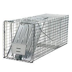 Havahart Rac Trap 32-inch x 10-inch x 12-inch 1-Door Animal Trap