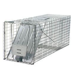 Havahart Cage à capture vivante à 1 porte pour animaux de Havahart – Grande taille