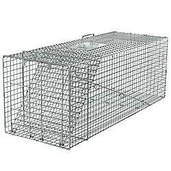 Havahart Rac Trap 42-inch x 15-inch x 15-inch 1-Door Large Animal Trap