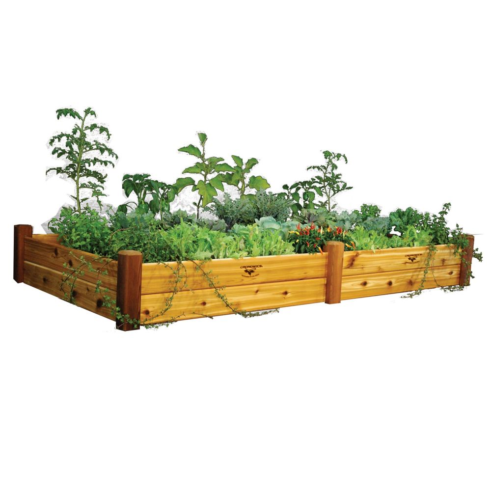 Gronomics Raised Garden Bed 48x95x13 Safe Finish The